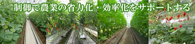 施設園芸、点滴潅水システム、いちご温室制御